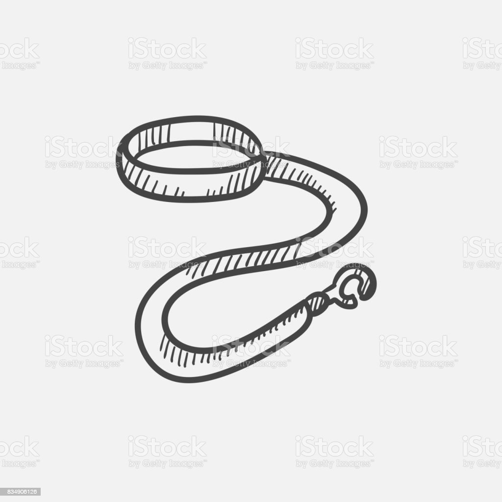 Dog leash and collar sketch icon vector art illustration