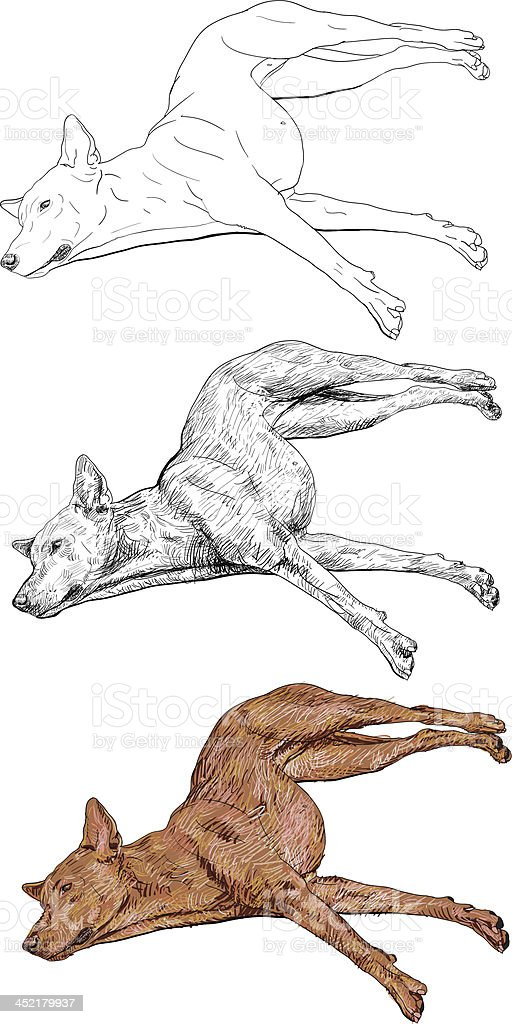 Dog lie with legs spread out royalty-free stock vector art