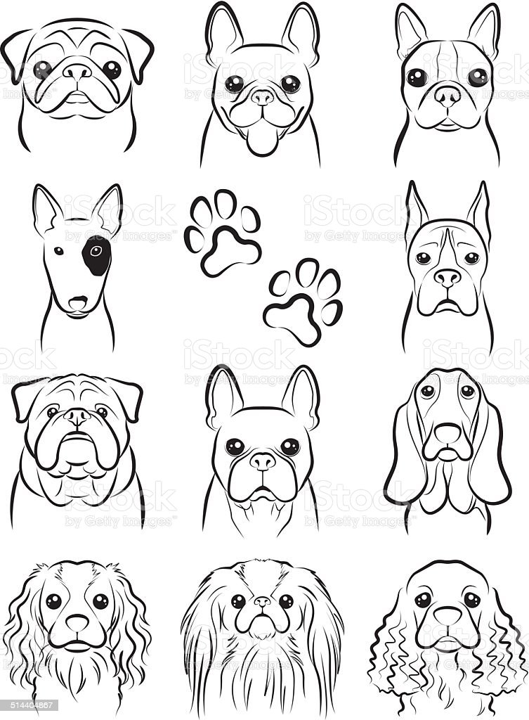 Line Drawing Of A Boxer Dog : Dog line drawing stock vector art istock