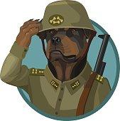 Dog Rottweiler loyal soldier