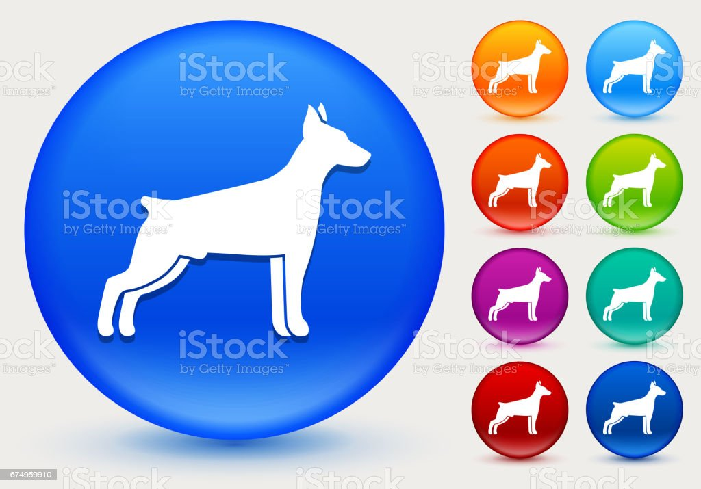 Dog Silhouette Icon on Shiny Color Circle Buttons vector art illustration