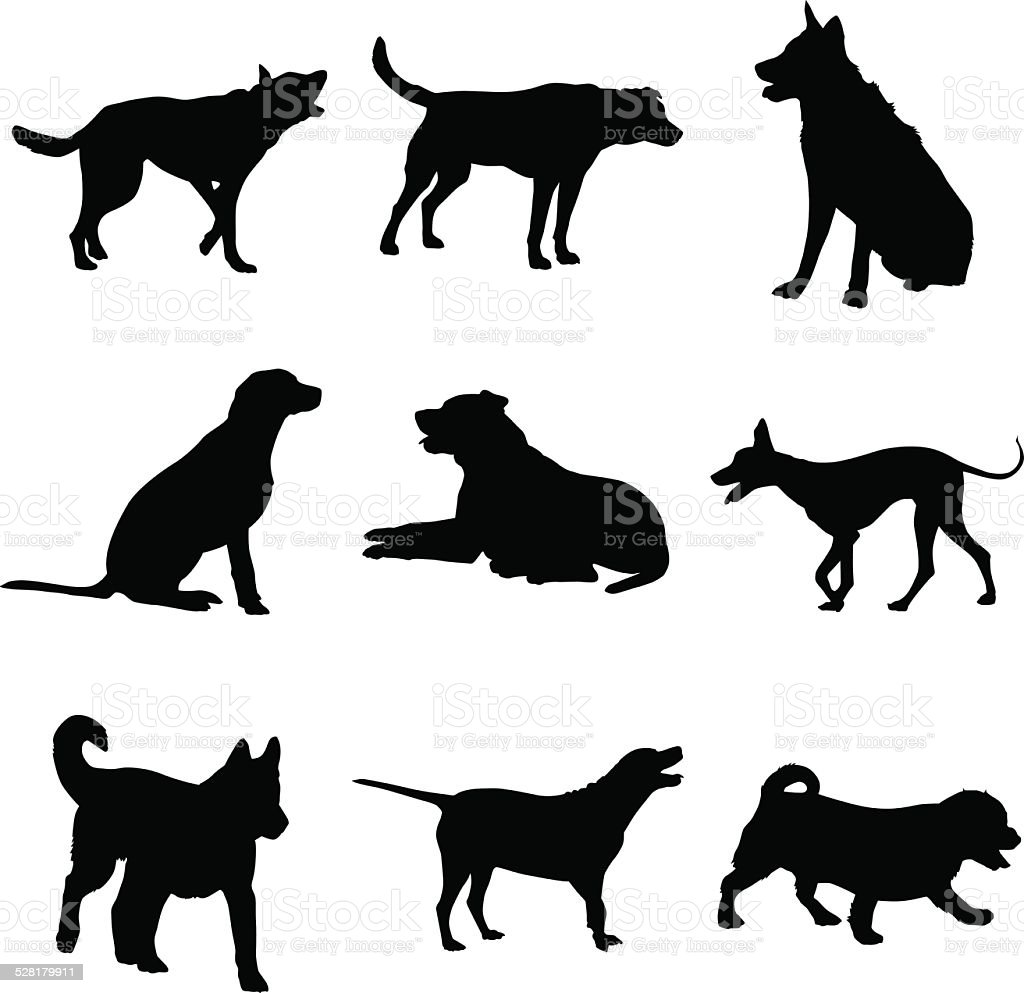 Dog Silhouettes vector art illustration