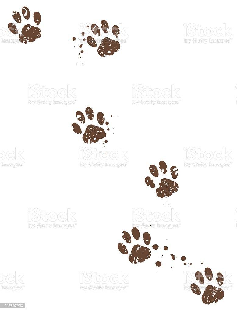 Dog tracks vector art illustration