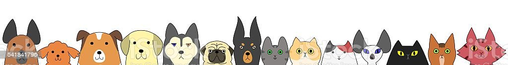 Dogs and cats banner vector art illustration