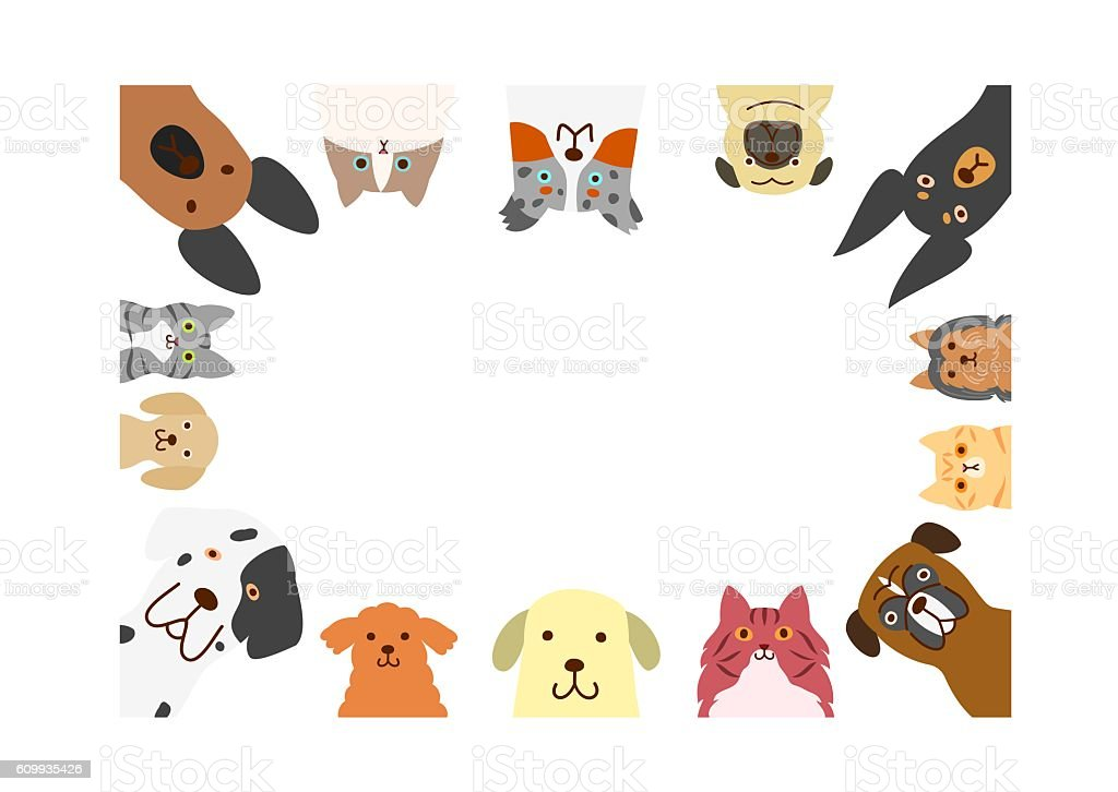 dogs and cats rectangle frame vector art illustration