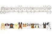 dogs border