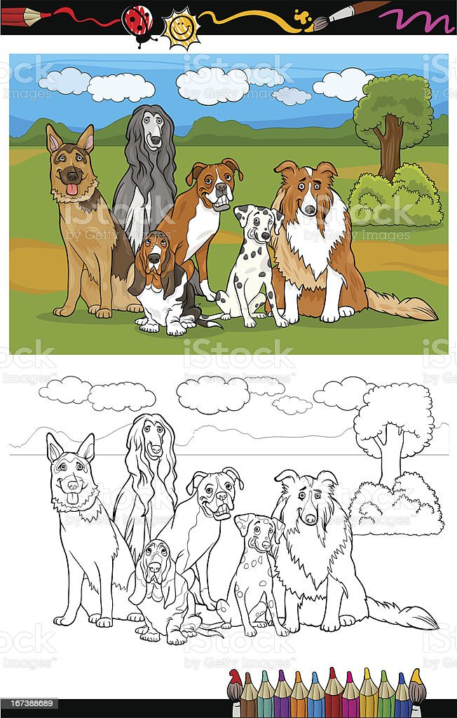 dogs breeds cartoon for coloring book royalty-free stock vector art