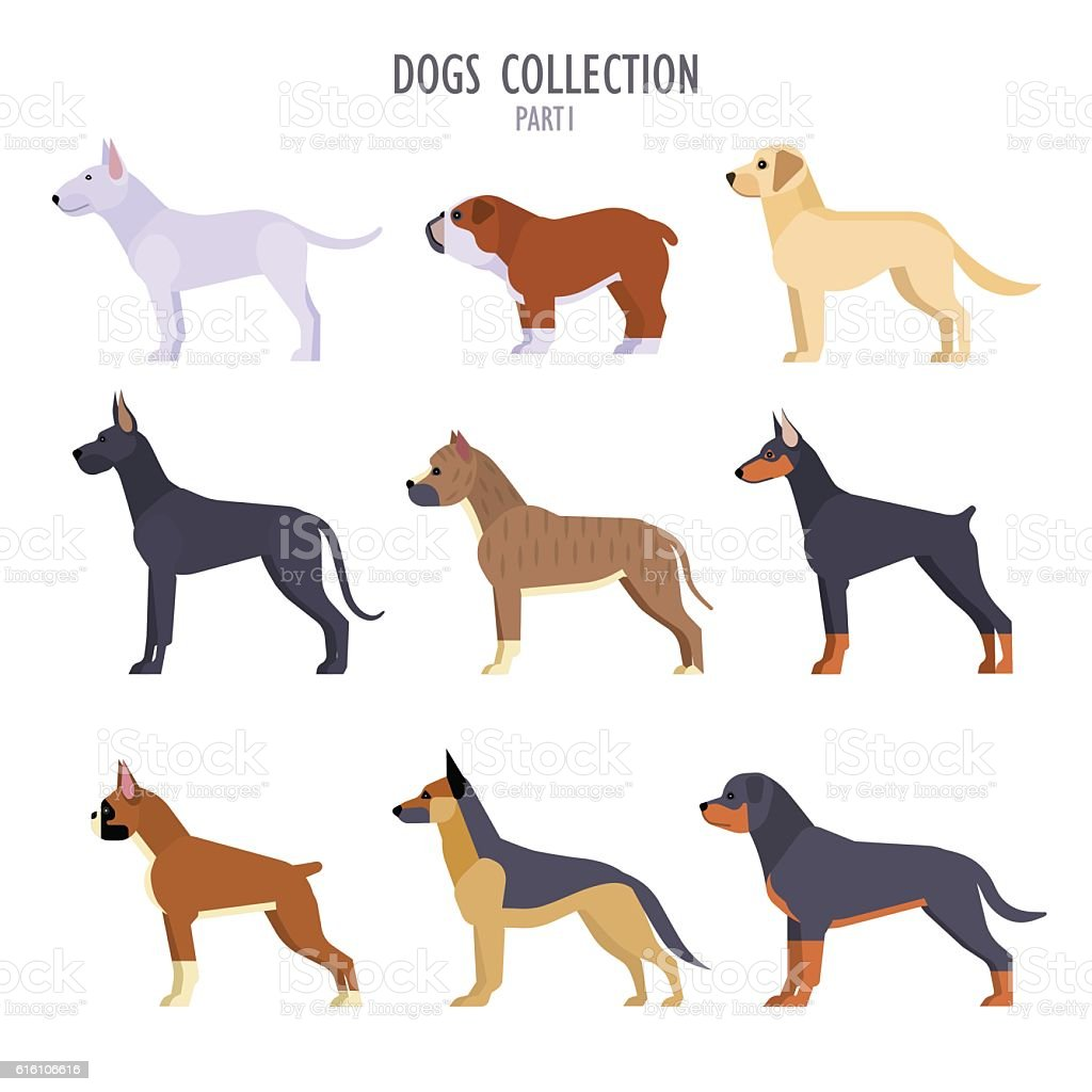 Dogs collection vector art illustration