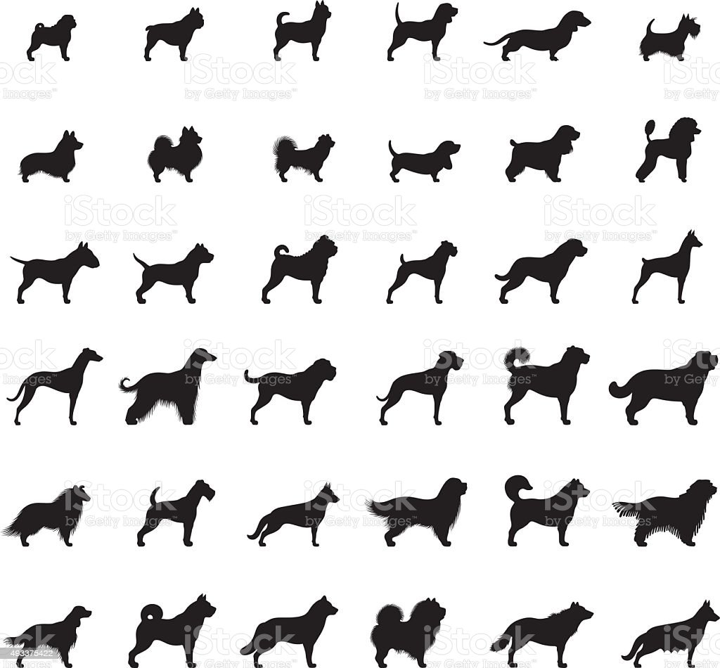 Dogs Icon Set vector art illustration