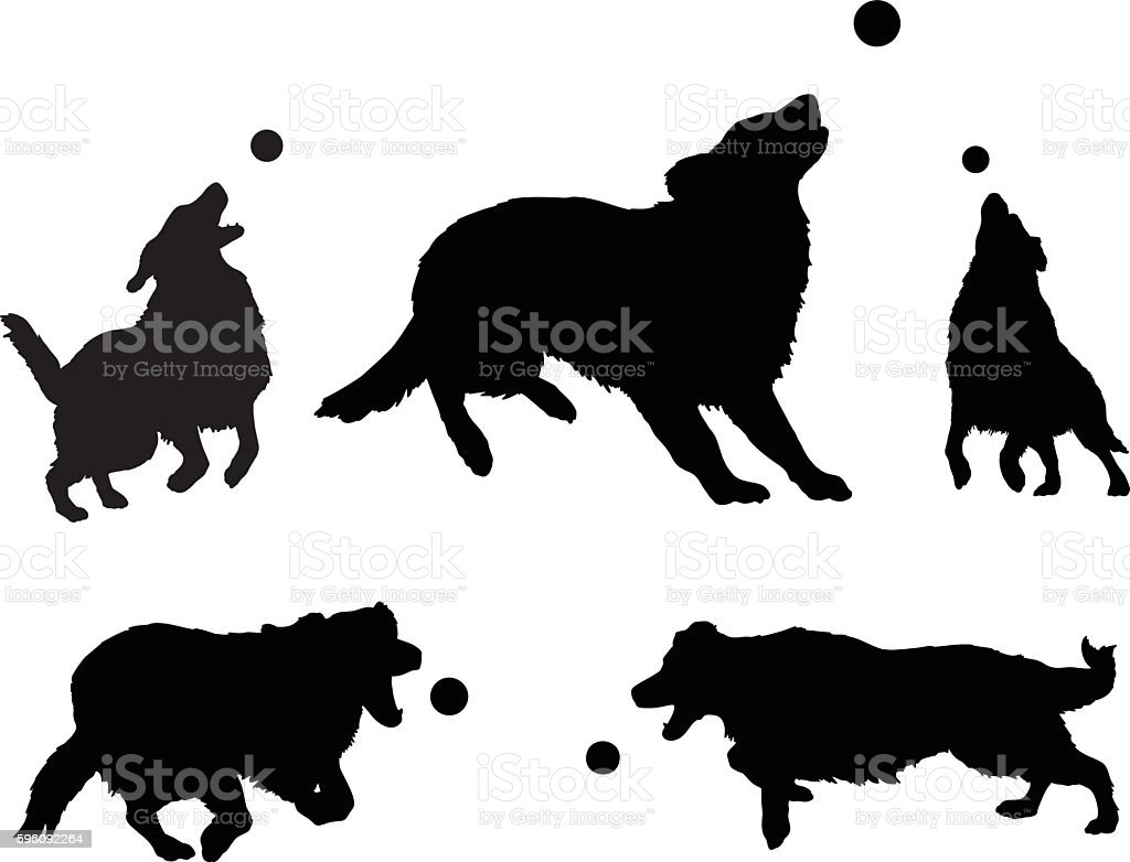 Dogs Playing With Ball vector art illustration