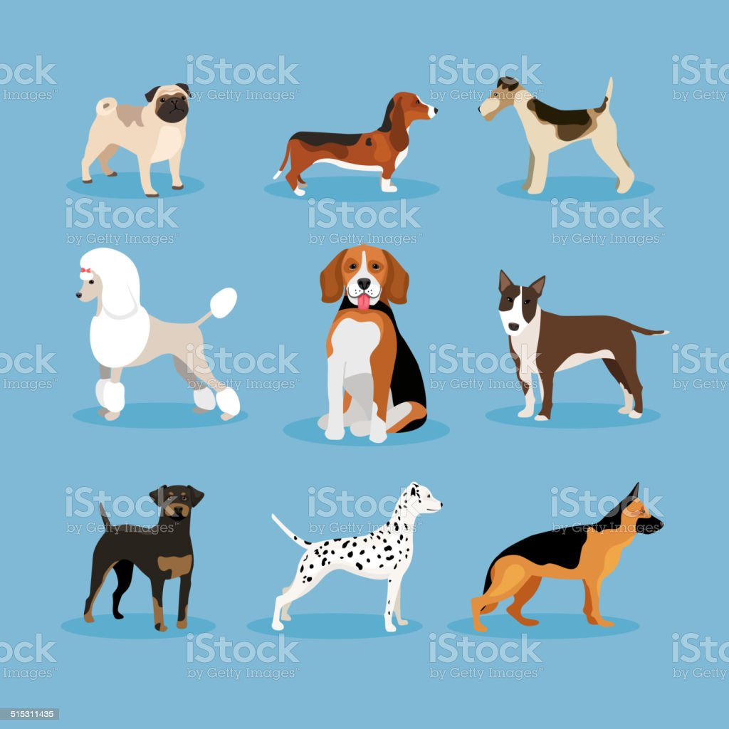 Dogs set vector art illustration