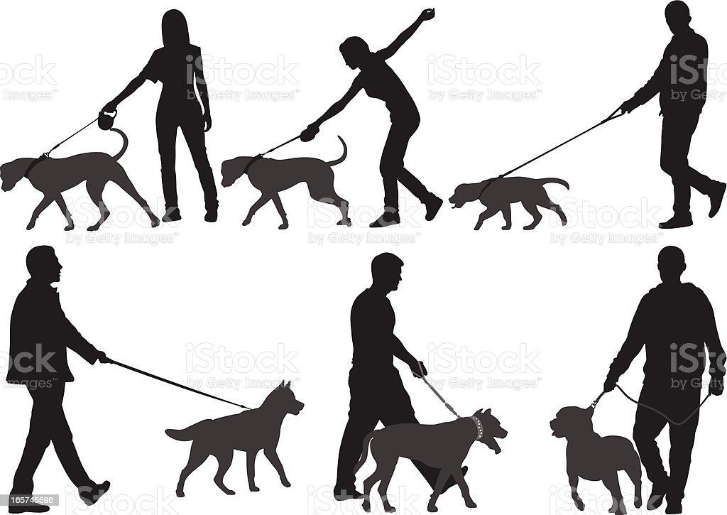 Dogs vector art illustration