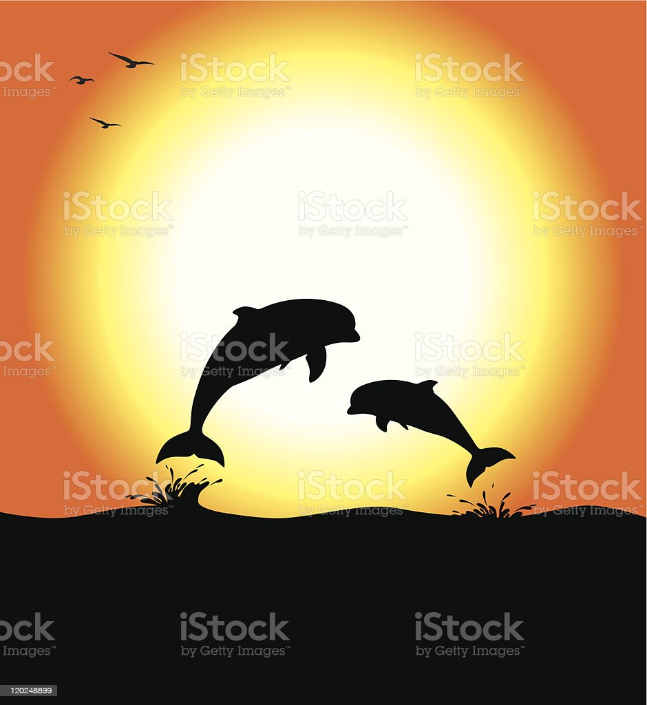 Dolphins at Sunset royalty-free stock vector art