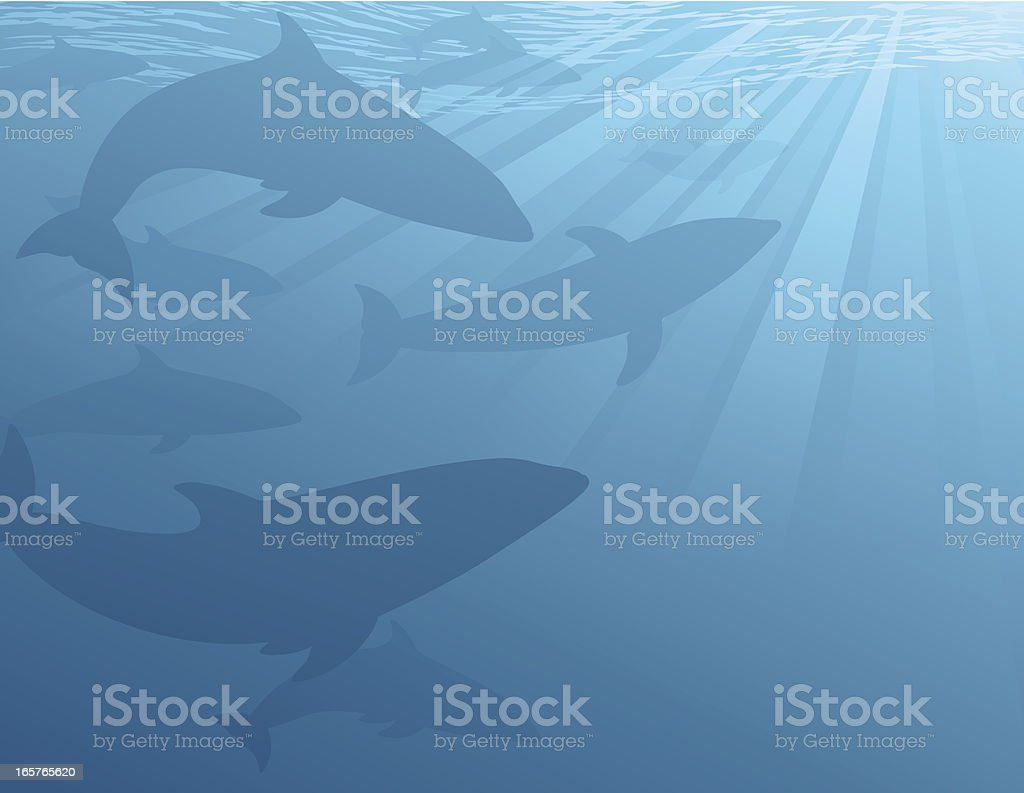 Dolphins Underwater vector art illustration