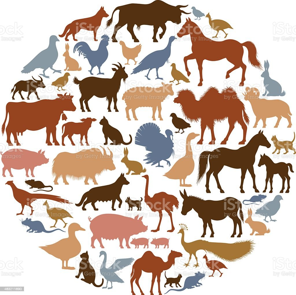 Domestic Animal Silhouettes vector art illustration