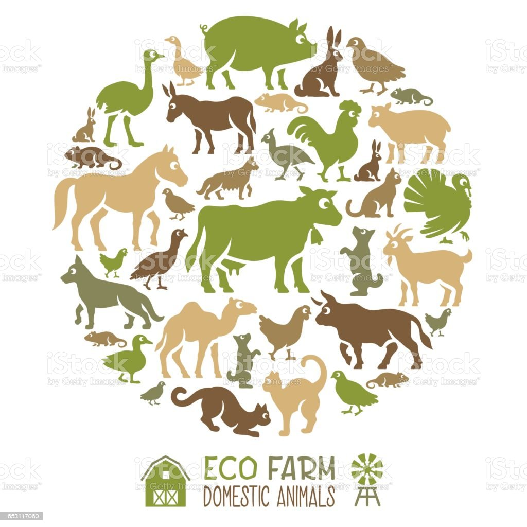 Domestic Animals Collage vector art illustration