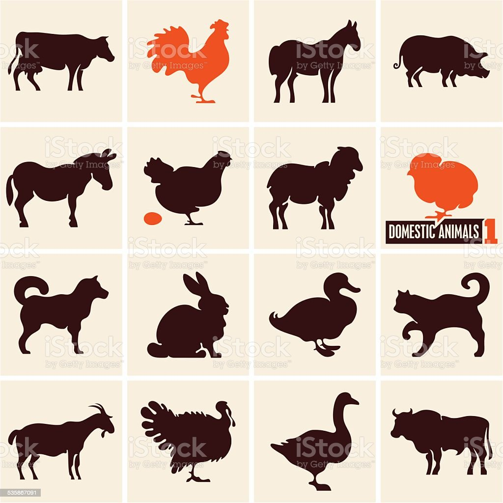 Domestic animals icons vector art illustration
