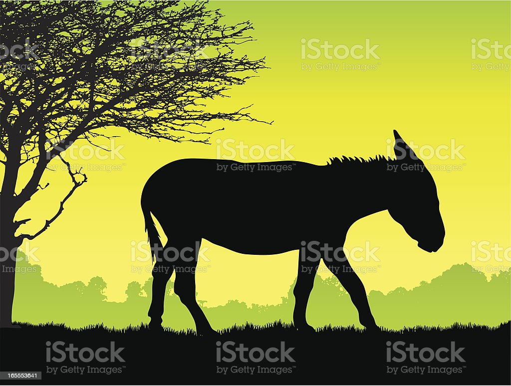 Donkey silhouette vector art illustration