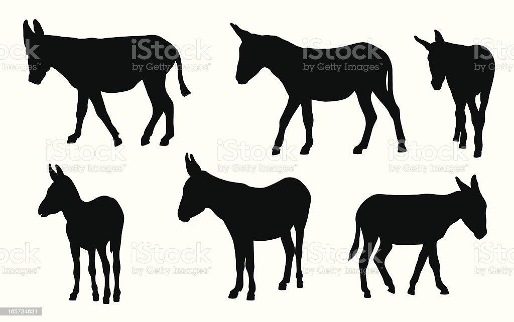Donkeys Vector Silhouette vector art illustration