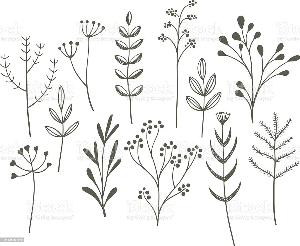 Doodle grass set. vector art illustration