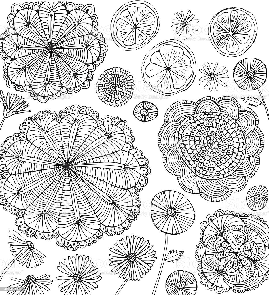 Doodle sunflowers, daisies, dandelions and orange slices isolated on white royalty-free stock vector art