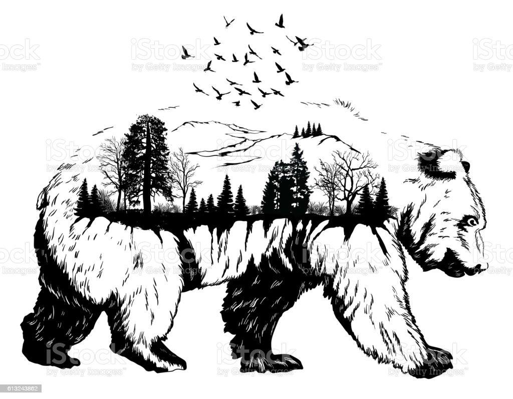 Double Exposure Hand Drawn Bear Stock Vector Art 613243862