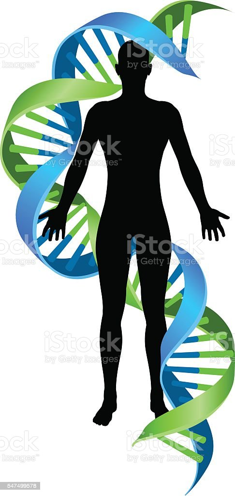 Double Helix DNA Chromosome Strand Human Figure vector art illustration