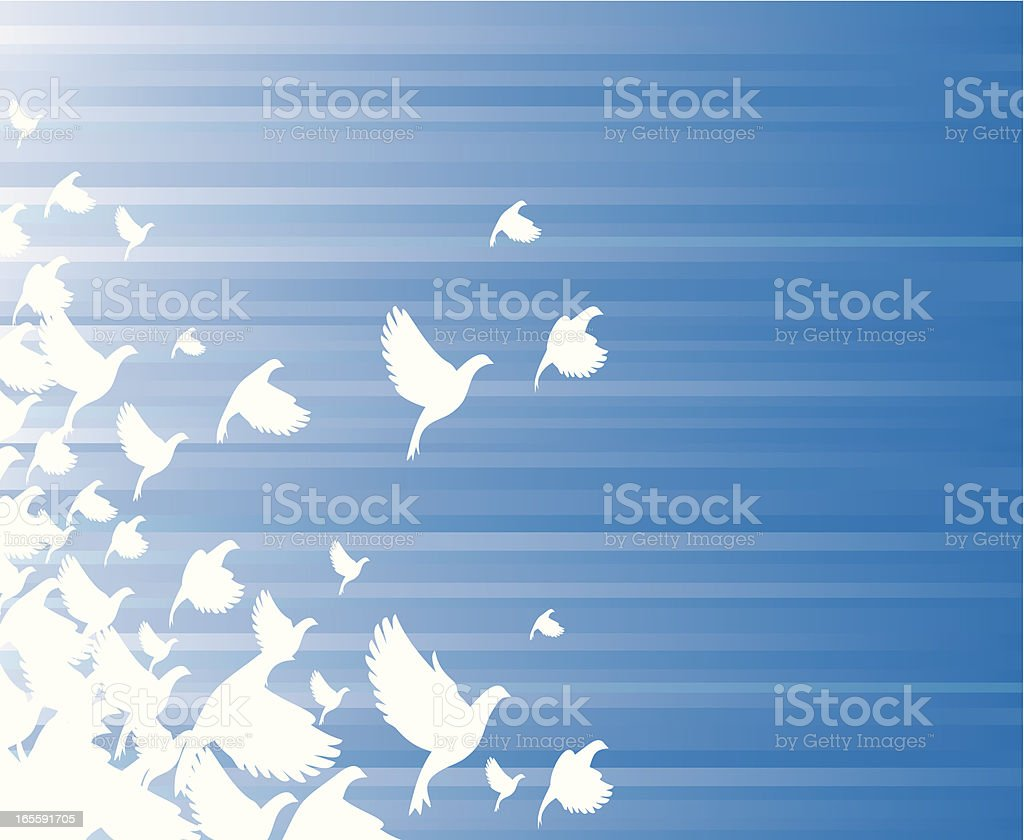 Doves. vector art illustration