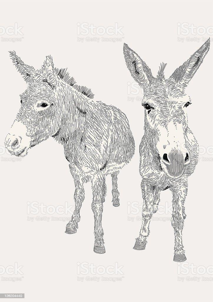 Dozy Donkeys vector art illustration
