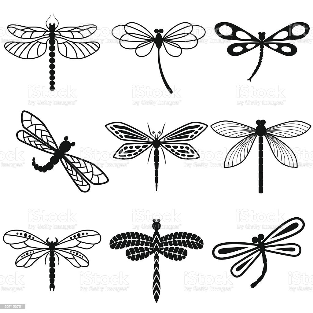 Dragonflies, black silhouettes on white background vector art illustration