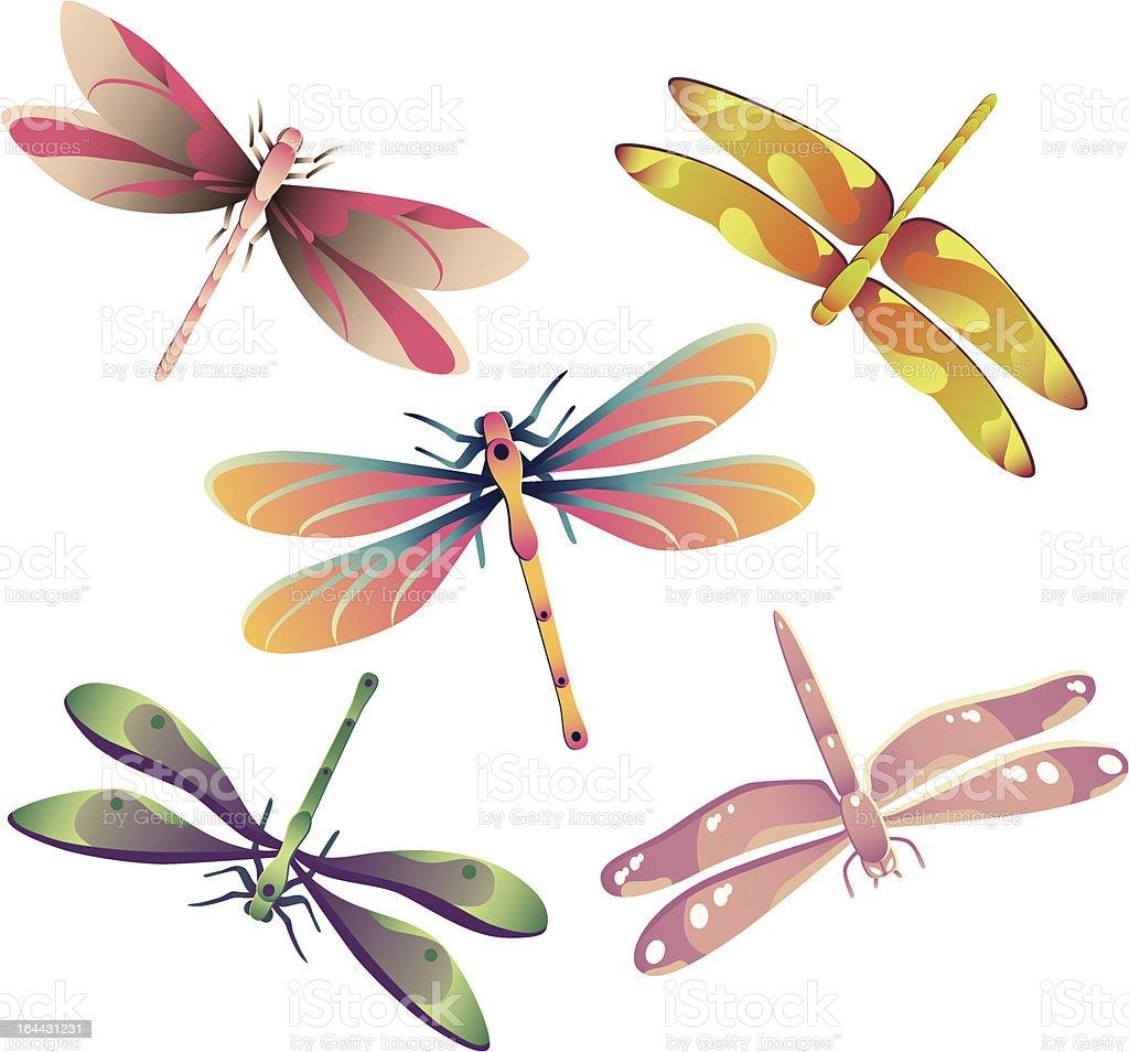 Dragonflies vector art illustration