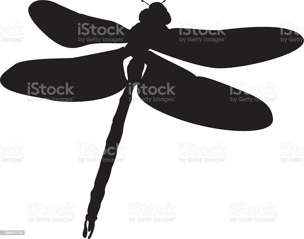 Dragonfly in Silhouette vector art illustration