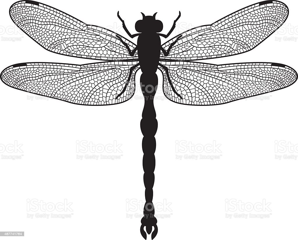 Dragonfly silhouette vector art illustration
