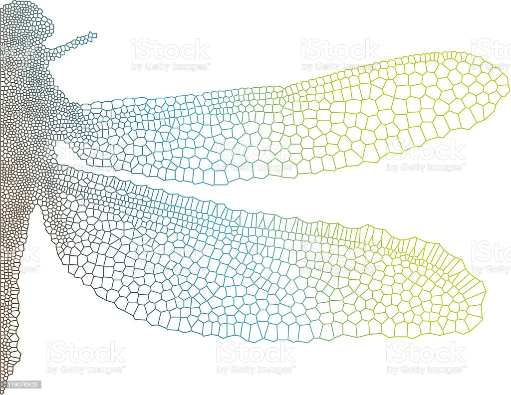 dragonfly wing royalty-free stock vector art