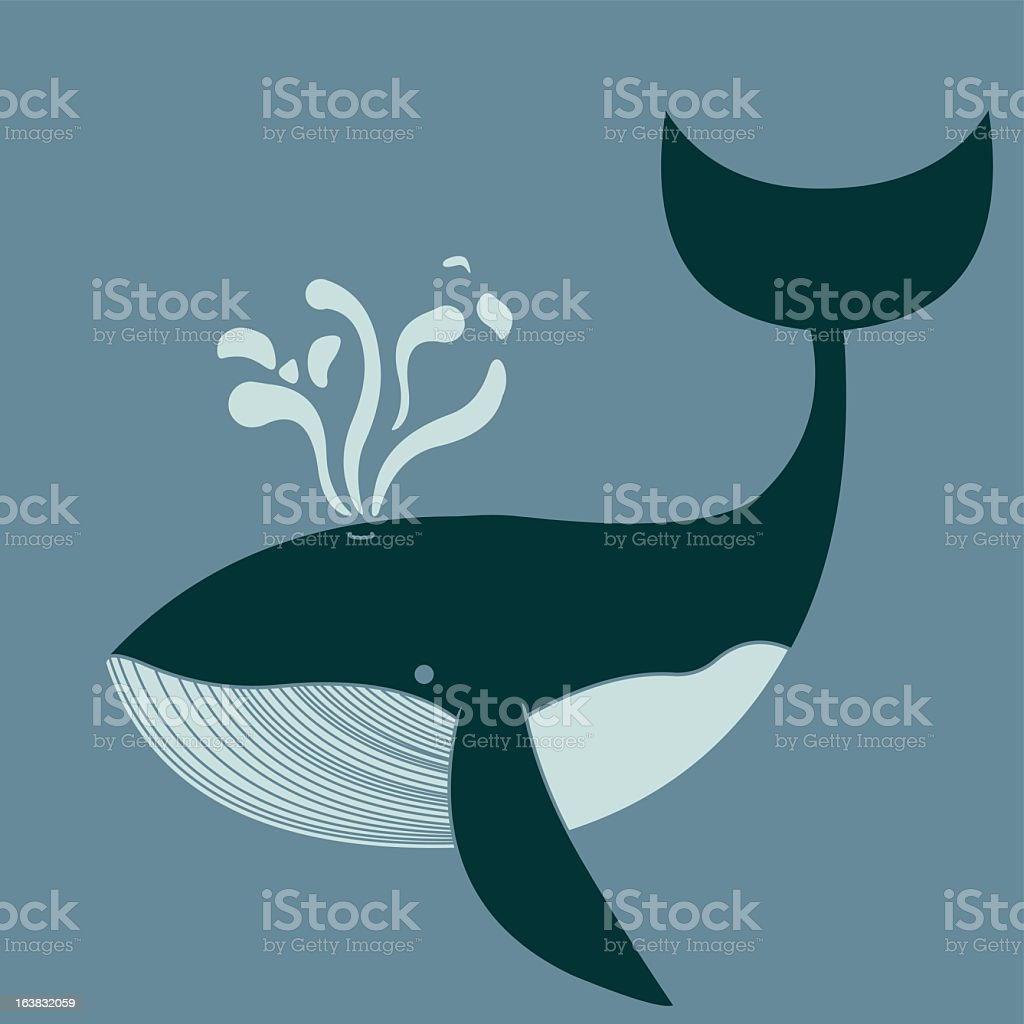Drawing of a spouting killer whale on gray background royalty-free stock vector art