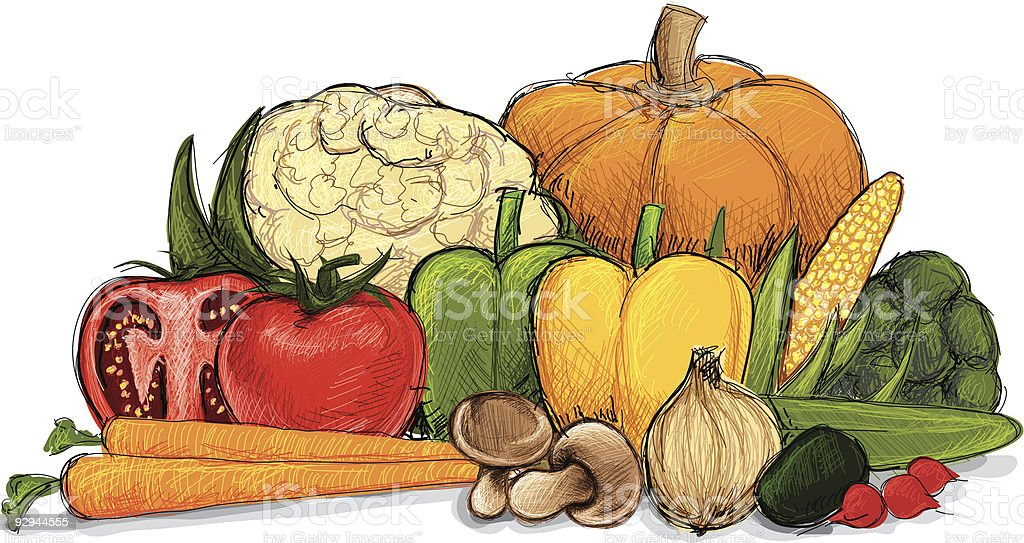 A drawing of a still life of vegetables royalty-free stock vector art