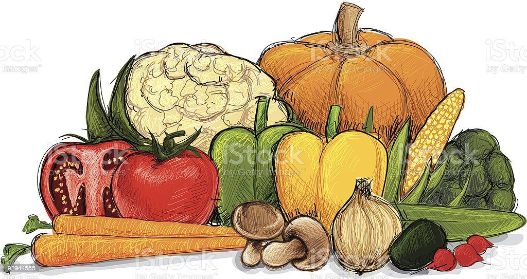 A drawing of a still life of vegetables vector art illustration
