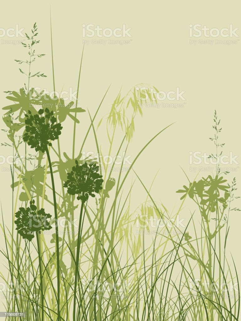 Drawing of grass on the lower part of a beige background vector art illustration