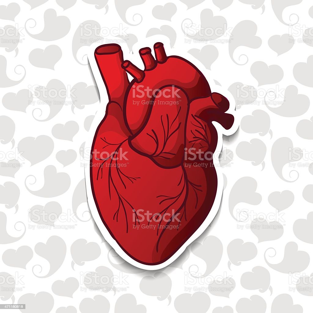 Drawing the human heart on background pattern of cartoon hearts. vector art illustration
