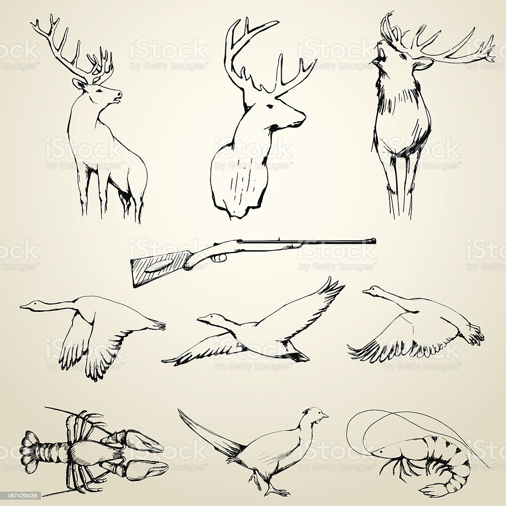 Drawn Wild Animals Collection vector art illustration