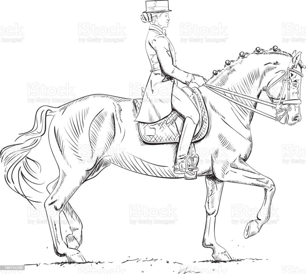 Dressage Rider - Piaffe vector art illustration