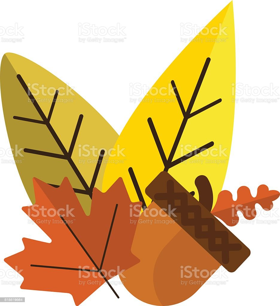 Dried acorns with leaves flat vector illustration vector art illustration