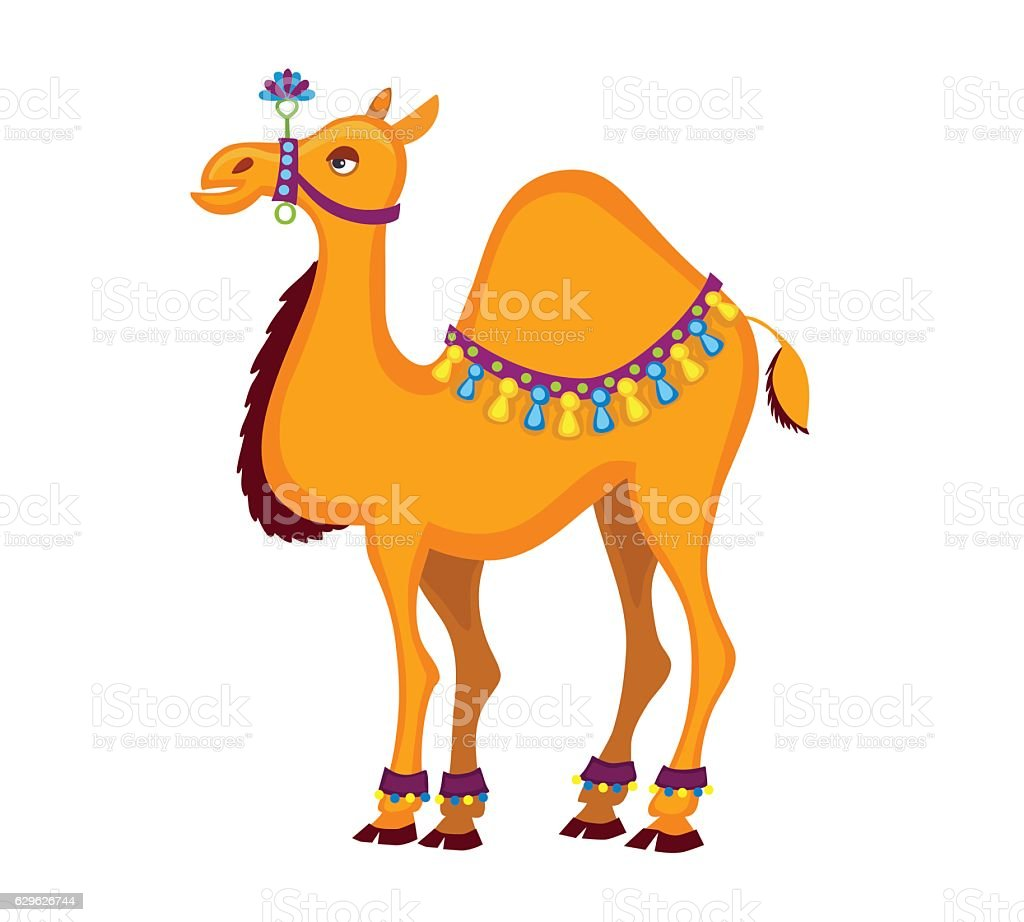 Dromedary. Decorated  cartoon camel. vector art illustration