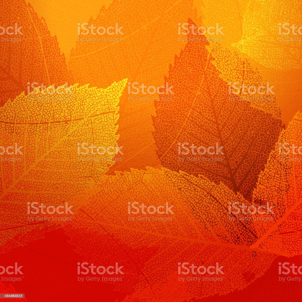 Dry autumn leaves template. EPS 10 royalty-free stock vector art