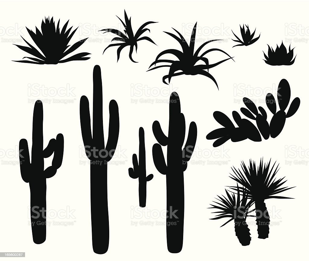 Dry Climate Plants  And Cactii Vector Silhouette vector art illustration