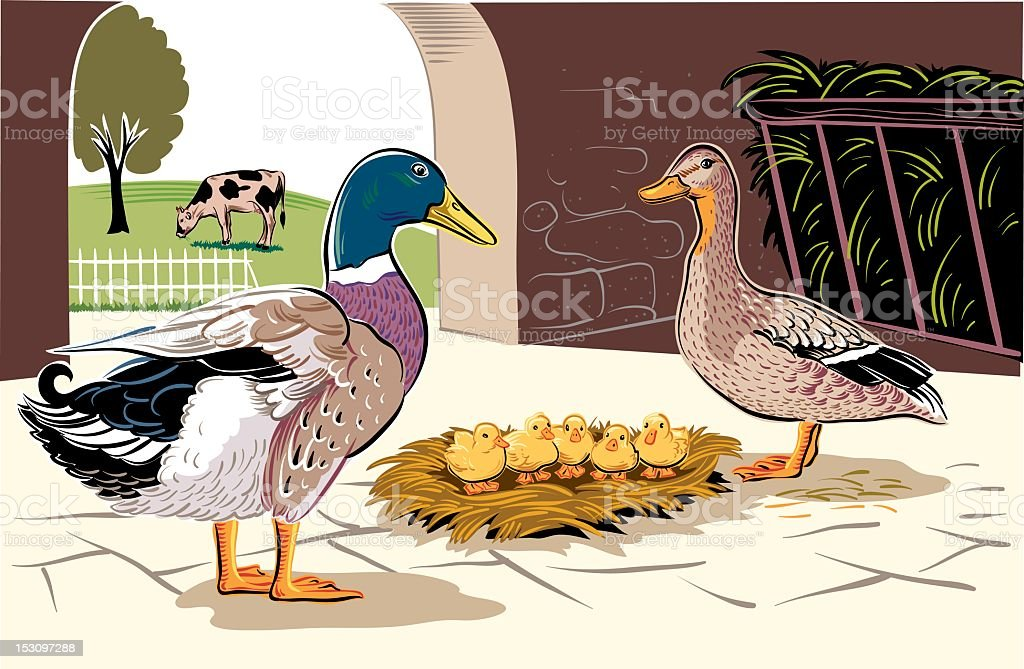 duck and Ducklings royalty-free stock vector art