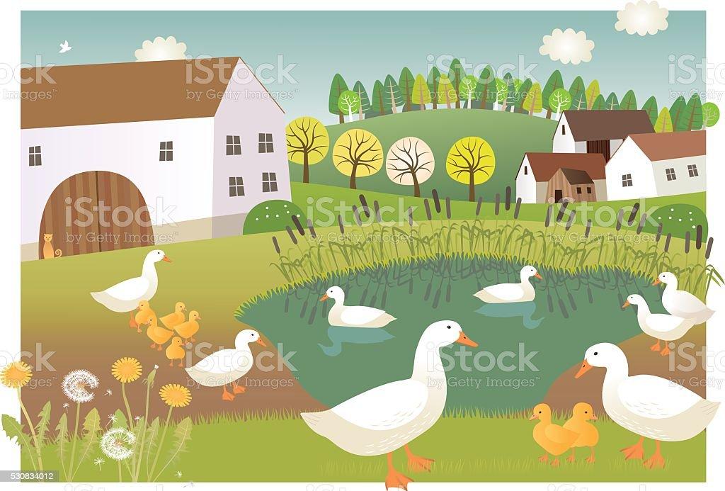Duck farm vector art illustration