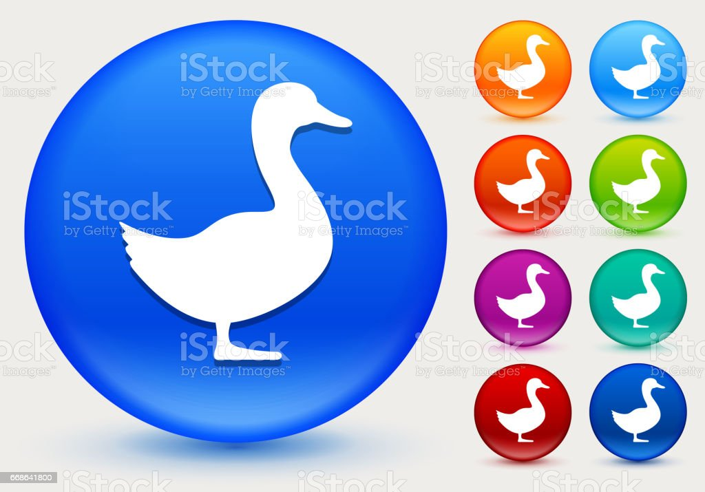 Duck Icon on Shiny Color Circle Buttons vector art illustration