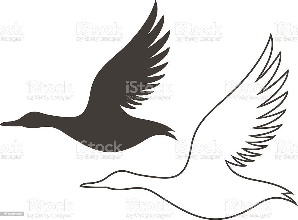 Duck vector art illustration