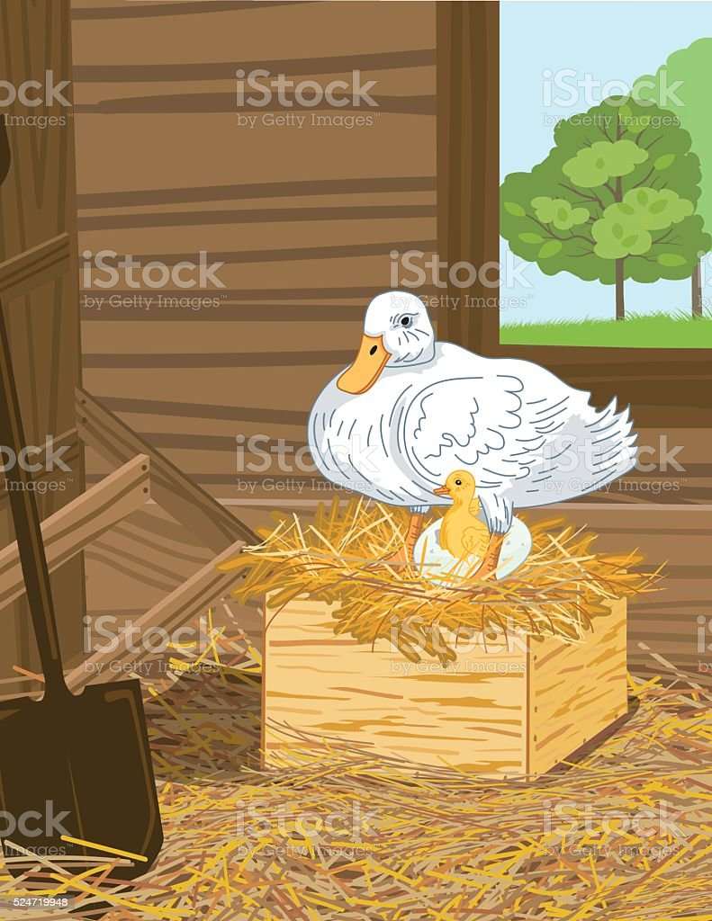 Duck With Hatched Egg and duckling In A Nest Box vector art illustration